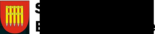 Služby města Brumov-Bylnice logo black
